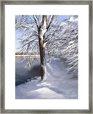 Last Snow Series N2 Framed Print by Veronica Minozzi