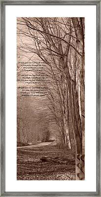 Last Walk Framed Print by BandC  Photography