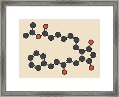Latanaprost Glaucoma Drug Molecule Framed Print