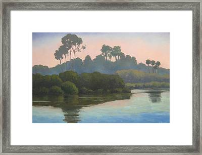 Late Afternoon At The Bird Refuge Framed Print