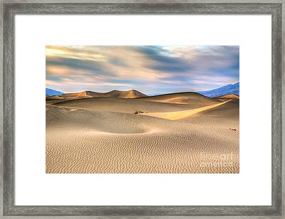 Late Afternoon At The Mesquite Dunes Framed Print