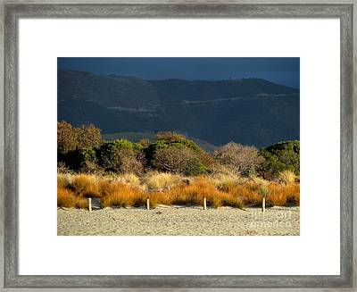 Late Afternoon Colours Framed Print