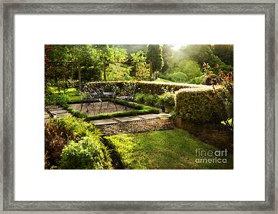 Late Afternoon Garden Framed Print by Linde Townsend