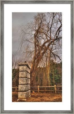 Late Afternoon Light Framed Print by Joann Vitali