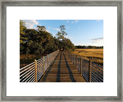 Late Afternoon Framed Print by Maurice Smith