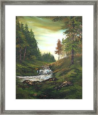 Late Afternoon On Cannock Chase Framed Print