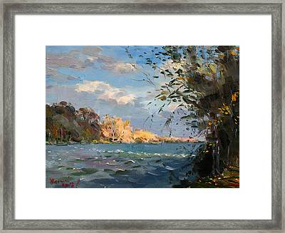 Late Afternoon On Goat Island Framed Print