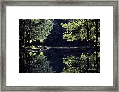 Late Afternoon Reflection Framed Print by Kevin McCarthy