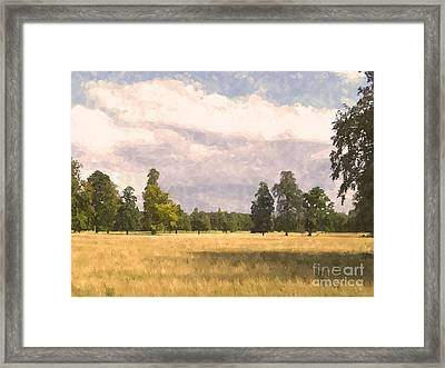 Late Afternoon Wheatfield  Framed Print by Pixel  Chimp