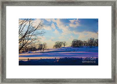 Late Afternoon Winter Framed Print by Dan Hilsenrath