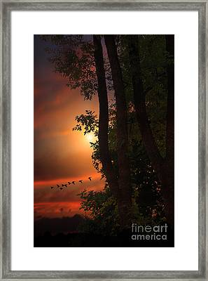 Late August Sunset Framed Print