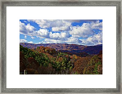 Late Autumn Beauty Framed Print