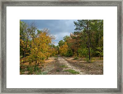 Late Autumn Framed Print by Svetlana Sewell