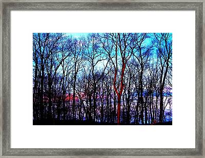 Late Cold Afternoon Framed Print by Jose Lopez