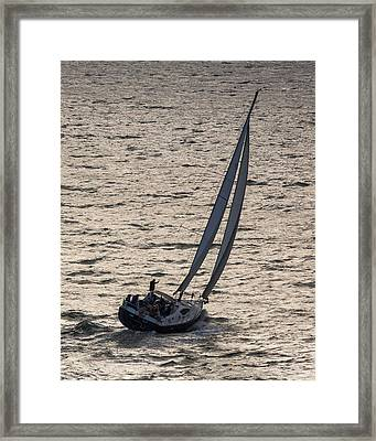 Late Day Easy Breeze Framed Print