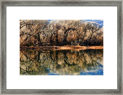 Late December Reflection At Dead Horse Framed Print