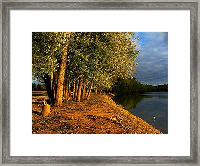 Late Evening On White River Framed Print