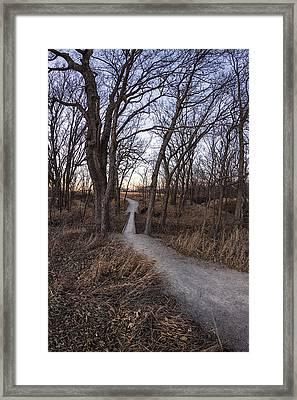 Late Evening Walk Framed Print