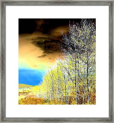 Late Fall Tree Line Framed Print