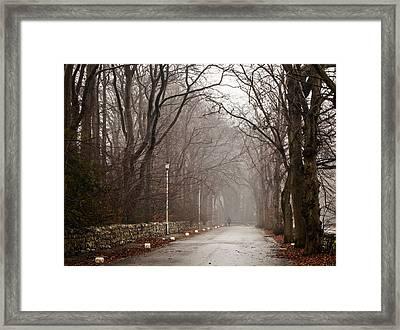 Late Fall Walk Framed Print by Brian Grzelewski