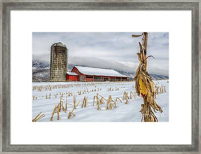 Late Harvest Framed Print by Anthony Heflin