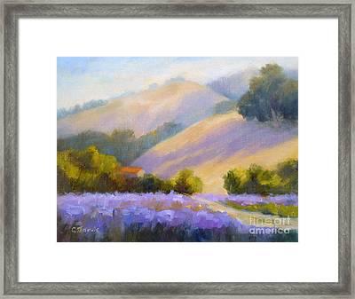 Late June Hills And Lavender Framed Print