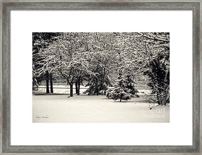Late On A Cold Winter Day Framed Print by Mary Machare