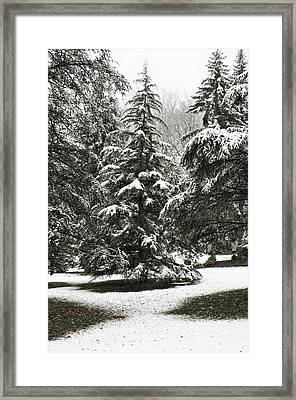 Framed Print featuring the photograph Late Season Snow At The Park by Gary Slawsky