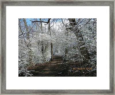 Framed Print featuring the photograph Late Season Snow Fall by Eric Switzer