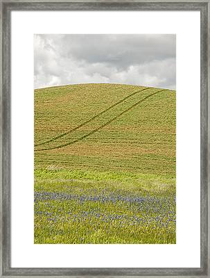 Late Spring Tracks Framed Print by Latah Trail Foundation