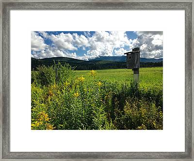 Late Summer In Vermont Framed Print by William Alexander