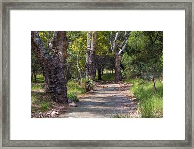 Framed Print featuring the photograph Late Summer Solitude by Beverly Parks