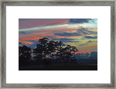 Framed Print featuring the photograph Late Sunset Trees In The Mist by Bill Swartwout
