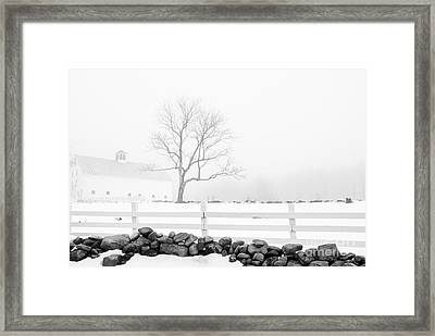 Late Winter Framed Print