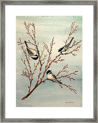 Late Winter Chickadees Framed Print by Gina Gahagan