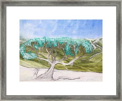 Late Winter Frost Framed Print