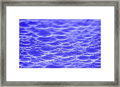 Laue Lens Prototypes Framed Print by Brookhaven National Laboratory