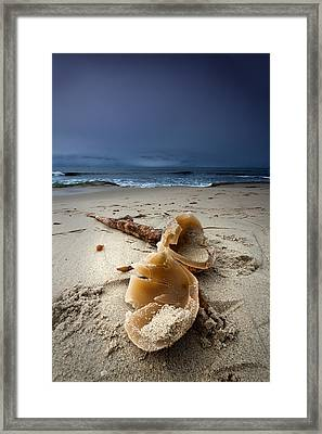 Laughing With A Mouth Full Of Sand Framed Print by Peter Tellone
