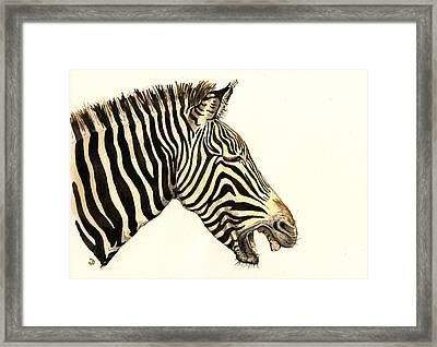 Laughing Zebra Framed Print by Juan  Bosco