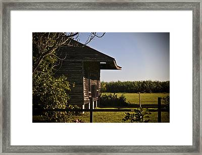 Laura Plantation Slave Home Framed Print by Ray Devlin