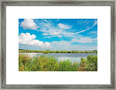 Lauwersmeer National Park. Framed Print