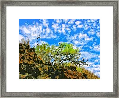 Lava And Keawe At Makena Beach Framed Print by Dominic Piperata