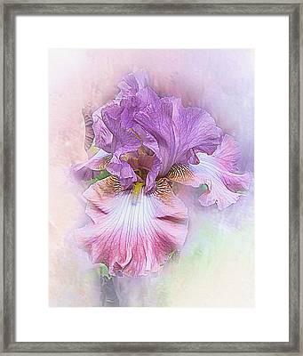 Framed Print featuring the digital art Lavendar Dreams by Mary Almond