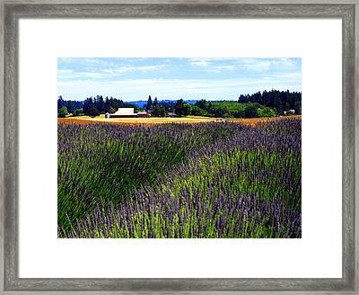 Lavender Barn Framed Print by Mamie Gunning