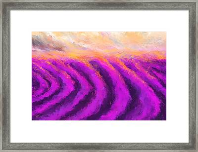 Lavender Delight - Lavender Field Impressionist Framed Print by Lourry Legarde