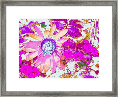 Framed Print featuring the photograph Lavender Echinacea by Annie Zeno