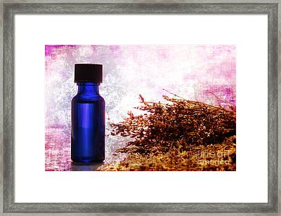 Lavender Essential Oil Bottle Framed Print by Olivier Le Queinec
