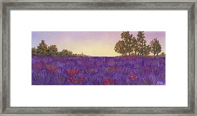Lavender Evening Framed Print by Anastasiya Malakhova