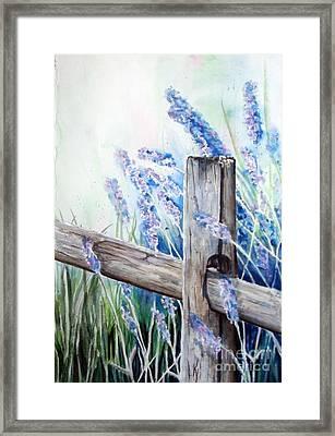 Lavender Fenced Garden  Framed Print by Kay Lodahl