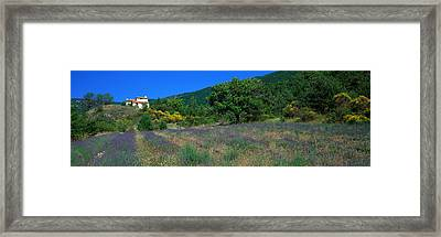Lavender Field La Drome Provence France Framed Print by Panoramic Images